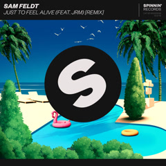 Just To Feel Alive (Remix) - Sam Feldt