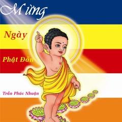 Mừng Ngày Phật Đản (Single)