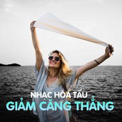 Nhạc Hòa Tấu Giảm Căng Thẳng - Various Artists