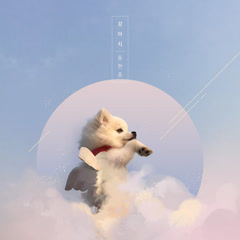 Puppy (Single)