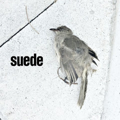 The Invisibles (Single) - Suede