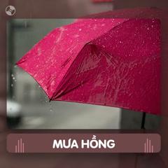 Thay Lời Muốn Nói: Mưa Hồng - Various Artists