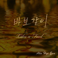 Like A Fool (Single) - Ahn Hye Eun