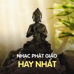 Album Nhạc Phật Giáo Hay Nhất