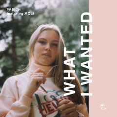 What I Wanted (Single)