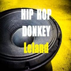Hip Hop Donkey (Carrot Mix) - Leland
