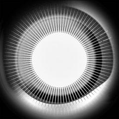 Moonlight (Single) - Disclosure