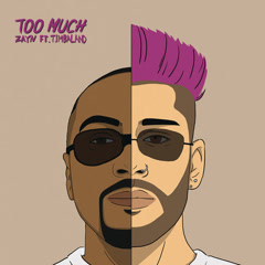Too Much (Single)