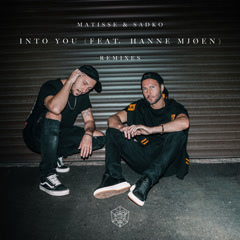 Into You (The Remixes) - Matisse & Sadko