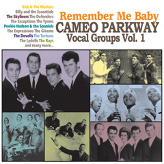 Remember Me Baby: Cameo Parkway Vocal Groups Vol. 1 - Various Artists