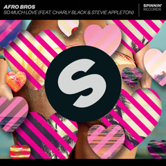 So Much Love (Single) - Afro Bros