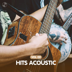Hits Acoustic - Various Artists