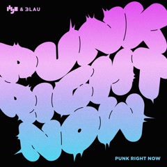 Punk Right Now (Single)