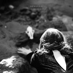 Dead IN The Water (Single)