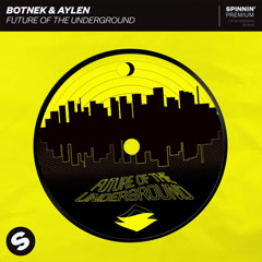 Future Of The Underground (Single) - Botnek, Aylen