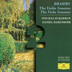 Brahms: The Violin Sonatas; The Viola Sonatas