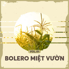 Bolero Miệt Vườn Vol 1 - Various Artists
