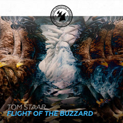 Flight Of The Buzzard (Single) - Tom Staar