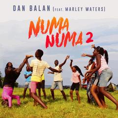 Numa Numa 2 (Single)