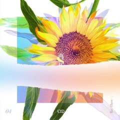 [Re:Flower] PROJECT #4 (Single) - EXID