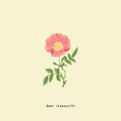 Dear Insecurity (Single)