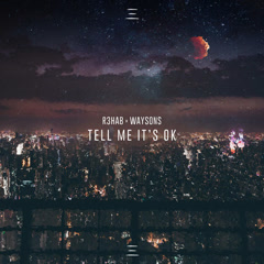 Tell Me It's Ok (Single) - R3hab, Waysons