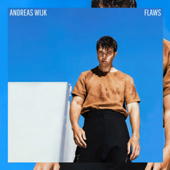Flaws (Single) - Andreas Wijk
