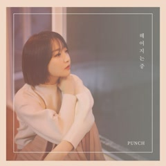 Good Bye (Single) - Punch