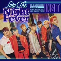 Into The Night Fever (Single) - IN2IT