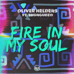 Fire In My Soul (Single)