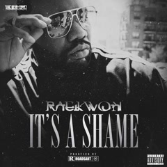 It's A Shame (Single) - Raekwon