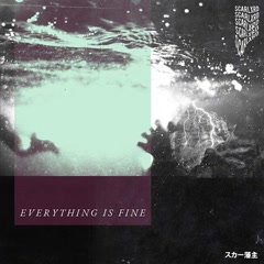 EVERYTHING IS FINE (Single)