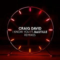 I Know You (Remixes) - Craig David