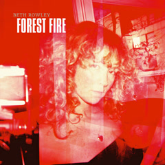 Forest Fire (Single)