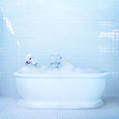 Vessel (Single) - Frankie Cosmos