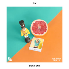 Dead End (Single) - Ily