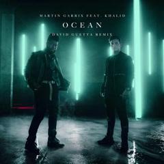 Ocean (David Guetta Remix) - Martin Garrix, David Guetta