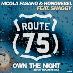 Own The Night (Miami Rockets Mix) - Nicola Fasano, Honorebel, Shaggy