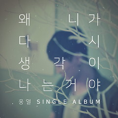 Why Do I Think of You Again (Single)