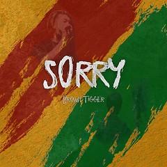 Sorry (Single) - Brown Tigger