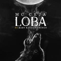 Loba (Single) - MC Ceja, Baby Rasta, Gringo