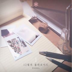 Polaroid December