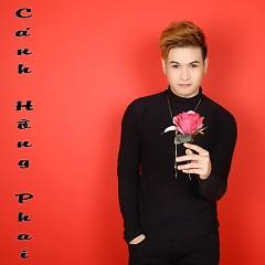 Cánh Hồng Phai (Single)
