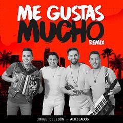 Me Gustas Mucho (Single)