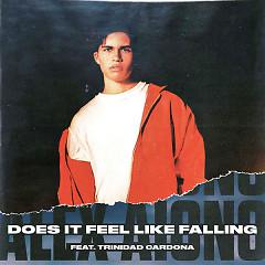 Does It Feel Like Falling (Single) - Alex Aiono