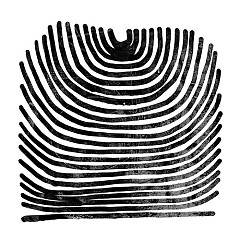 Howl - Rival Consoles