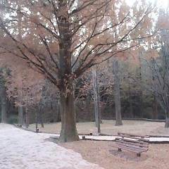 A Good Chair (Single) - 5'Clock