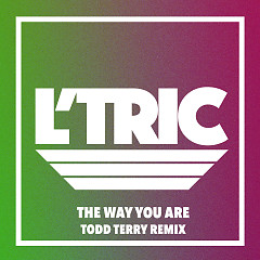 The Way You Are (Todd Terry Remix) (Single)