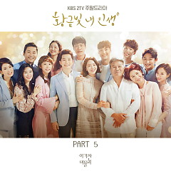My Golden Life OST Part.5