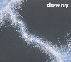 2nd 無題 ( 2nd Mudai) - Downy